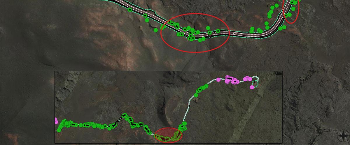 cartographie_974_reunion_etude_ecologie_environnement_etude_impacts
